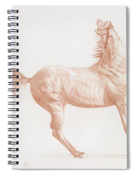 Kicking Off Spiral Notebook