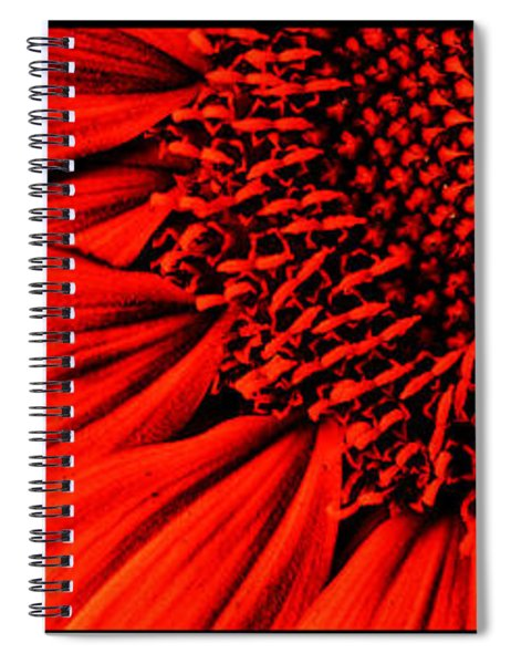 3 Tile Sunflower Colors Spiral Notebook