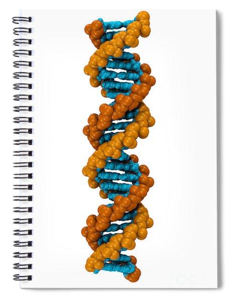 3d Dna Molecule Spiral Notebook