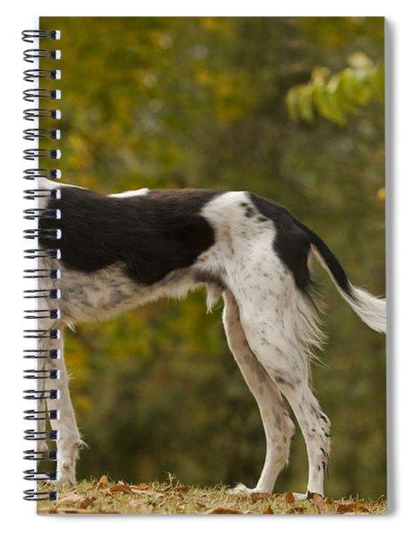 Saluki Spiral Notebook