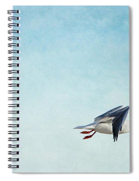 Seagull Spiral Notebook