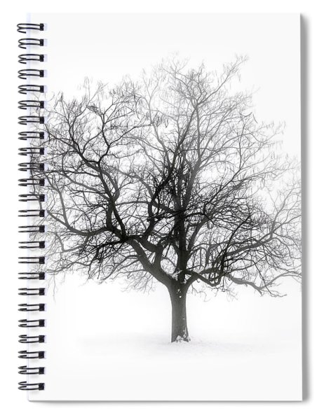 Winter Tree In Fog Spiral Notebook