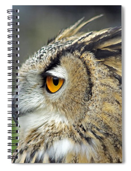 European Eagle Owl Spiral Notebook