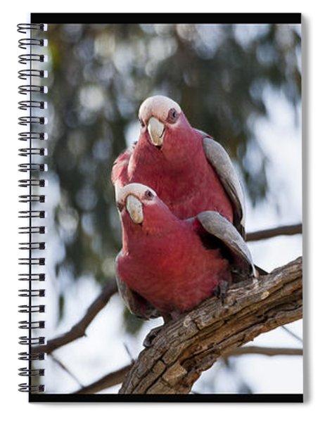 Galahs Spiral Notebook