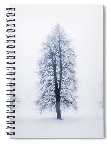 Winter Trees In Fog Spiral Notebook