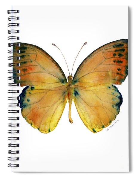 53 Leucippe Detanii Butterfly Spiral Notebook