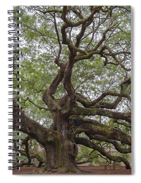 Sc Angel Oak Tree Spiral Notebook