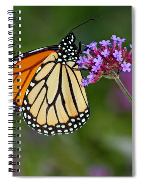 Monarch Butterfly In Garden Spiral Notebook