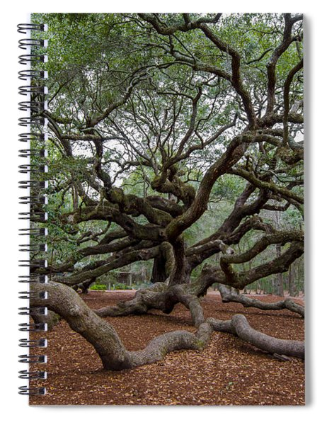 Mighty Branches Spiral Notebook