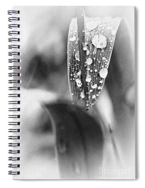 Raindrops On Grass  Spiral Notebook