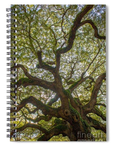 Island Angel Oak Tree Spiral Notebook