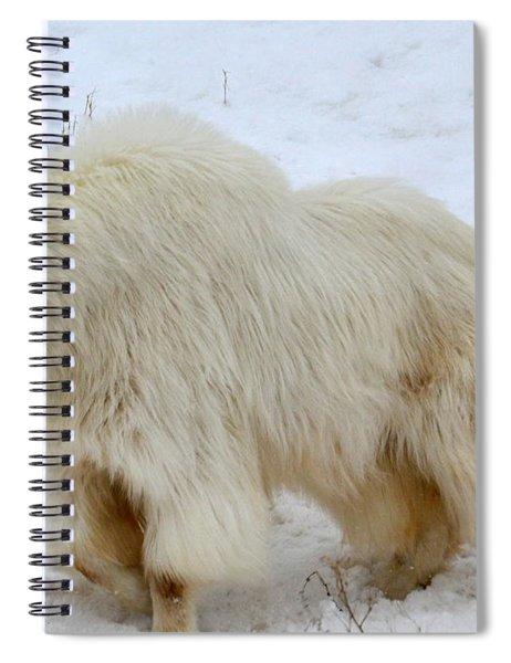 A Beautiful Woman Spiral Notebook