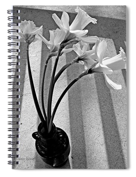 A Brief Moment Spiral Notebook