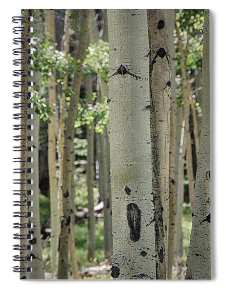 A Change Of Weather  Spiral Notebook