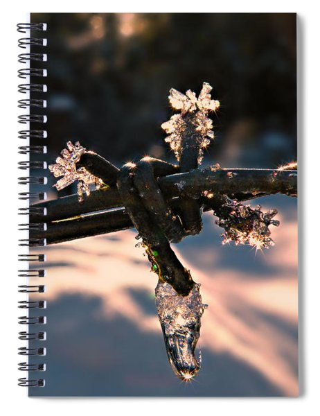 A Cold Welcome Spiral Notebook