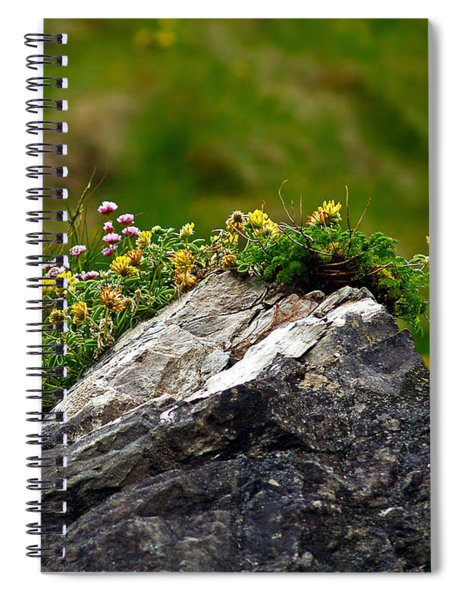 A Contrast In Textures Spiral Notebook