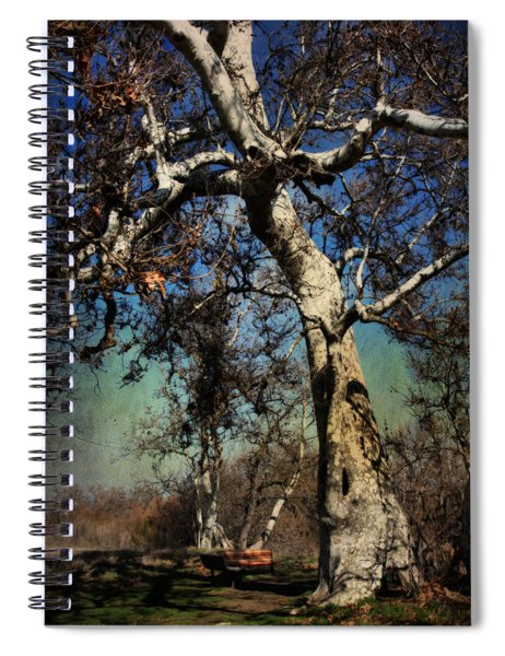 A Day Like This Spiral Notebook