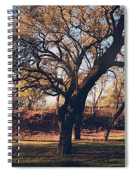 A Day That Glows Spiral Notebook