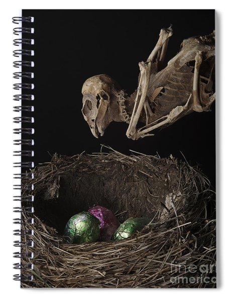 A Dead Bird Flies Into Its Nest Only To Find Chocolate Eggs Spiral Notebook