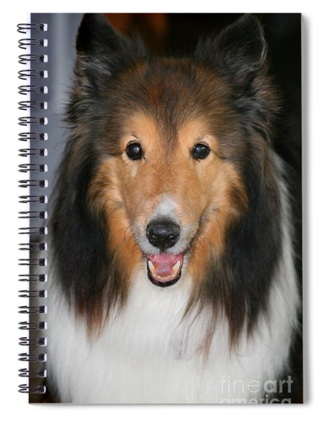 A Dog Named Beau Spiral Notebook