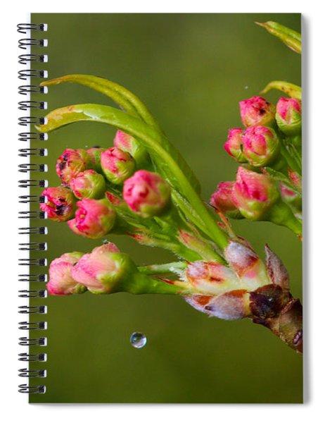 A Drop Of Water Spiral Notebook
