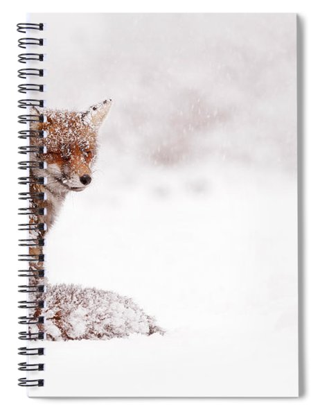 A Red Fox Fantasy Spiral Notebook