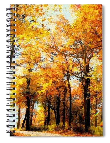A Golden Day Spiral Notebook