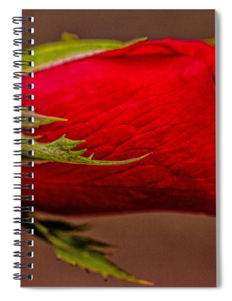 A Knockout Bloom Spiral Notebook