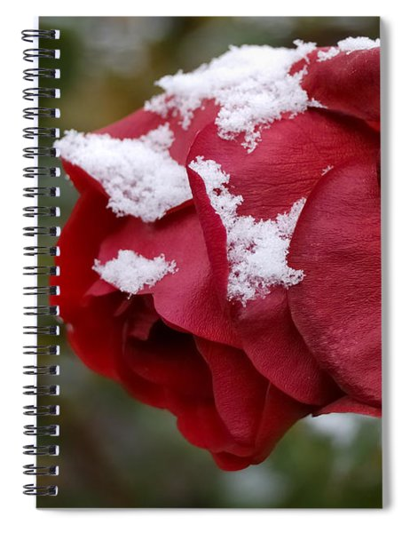 A Passing Unrequited - Rose In Winter Spiral Notebook