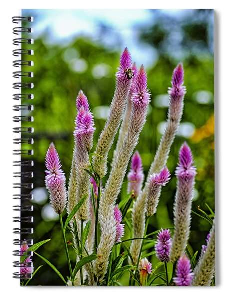 A Place Of Delight Spiral Notebook