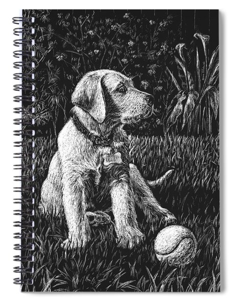 A Puppy With The Ball Spiral Notebook
