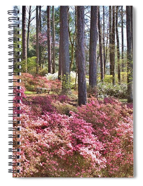 A Quiet Spot In The Woods Spiral Notebook