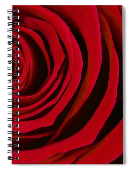 A Rose For Valentine's Day Spiral Notebook