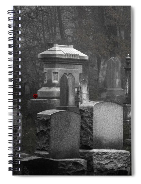 A Single Red Rose Spiral Notebook