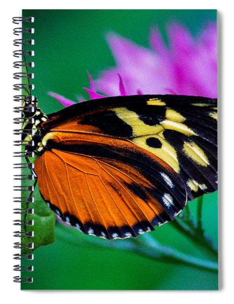 Spiral Notebook featuring the photograph A Splash Of Colour by Garvin Hunter