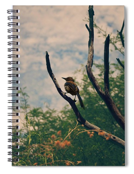 A Sweet Song Spiral Notebook