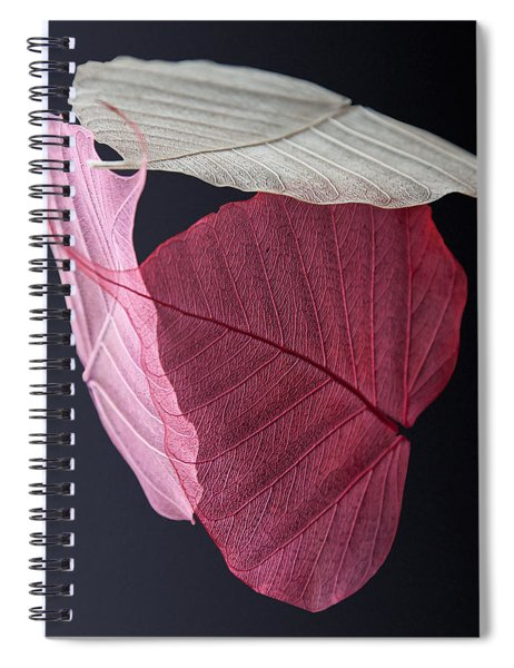 A Trinity Of Leaves Spiral Notebook