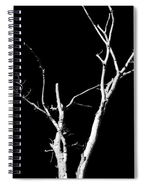 Abstract Branches Spiral Notebook