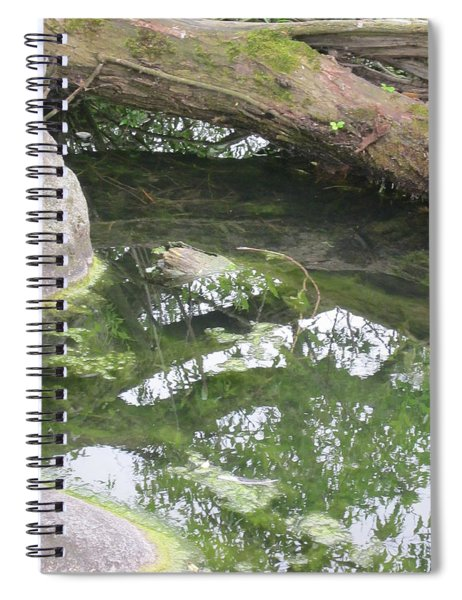Abstract Nature 3 Spiral Notebook
