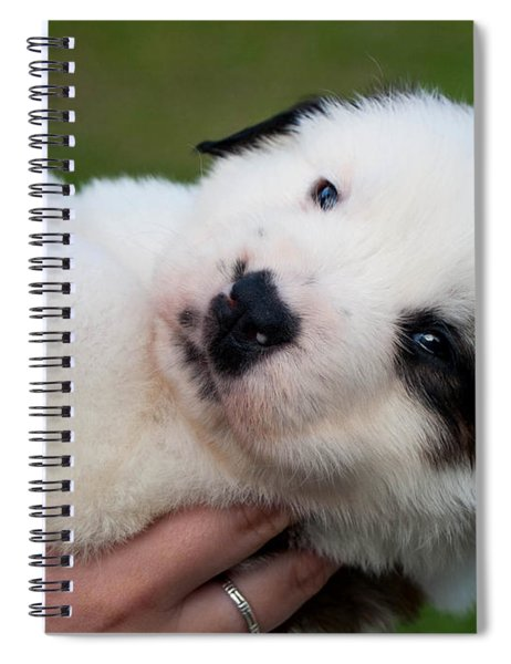 Adorable Hand Full Spiral Notebook