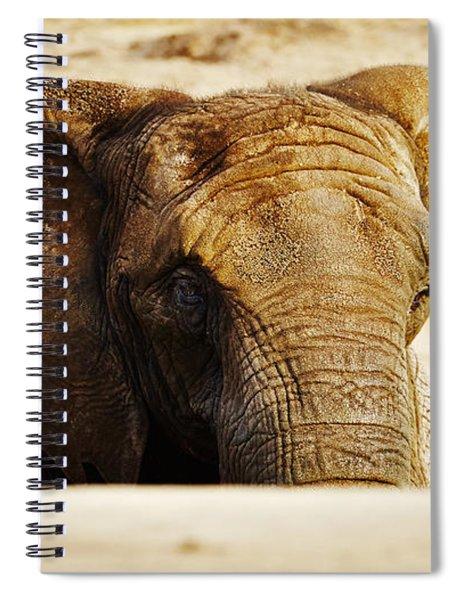 African Elephant Behind A Hill Spiral Notebook