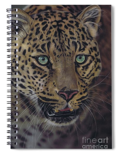 After Dark All Cats Are Leopards Spiral Notebook