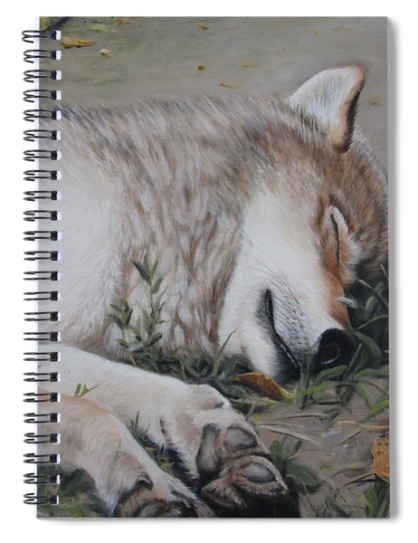 Afternoon Nap Spiral Notebook