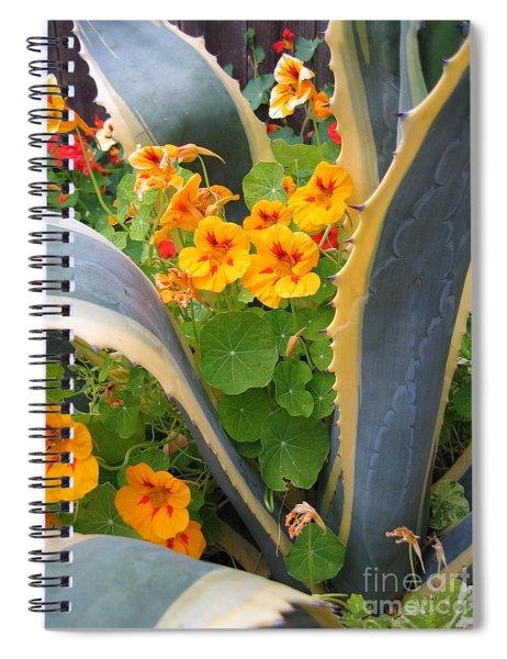 Agave And Nasturtiums Spiral Notebook