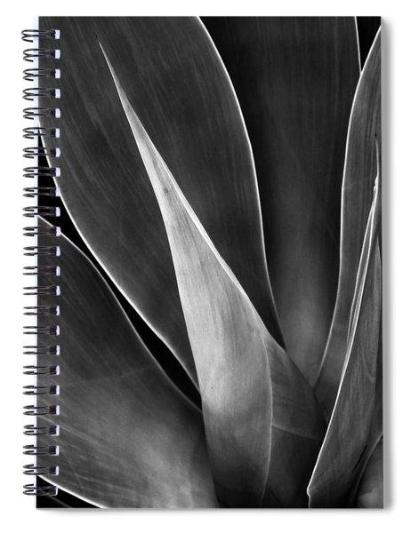 Agave No 3 Spiral Notebook