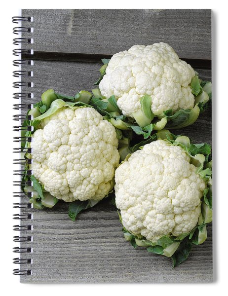 Agriculture - Fresh Heads Spiral Notebook
