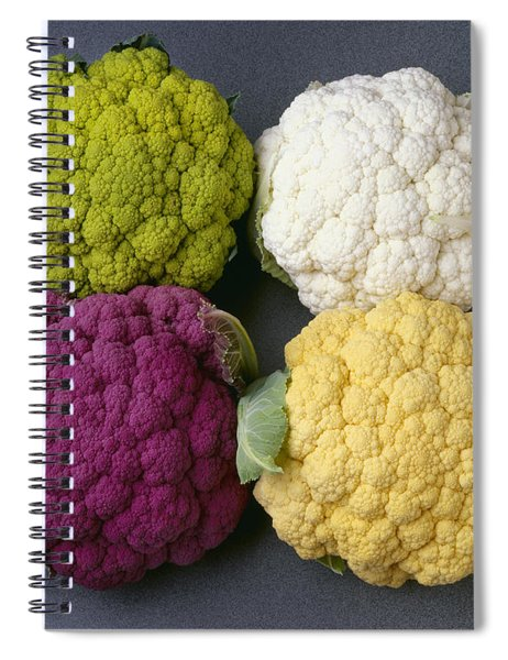 Agriculture - Heads Of Colored Spiral Notebook