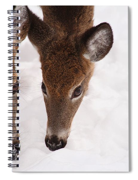 All Eyes On Me Spiral Notebook