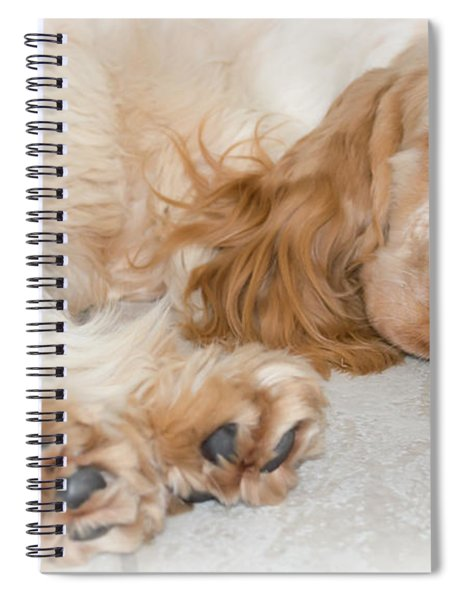 All Feet And Ears Spiral Notebook