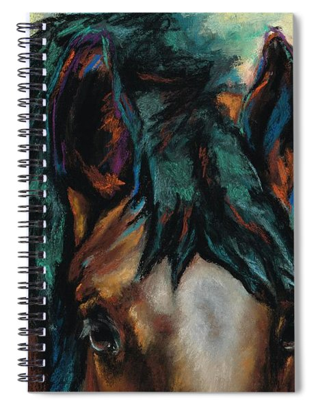 All Knowing Spiral Notebook